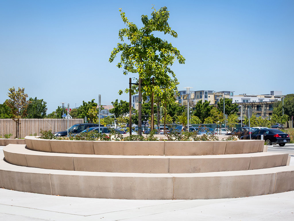 an image a circular cement outdoor sitting area with shrubs and trees planted at the top of the three tiered circular ledges